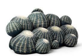 Sofa - kaktusas