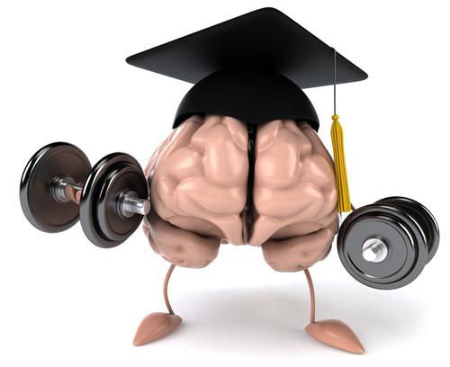 smegenu treniravimas